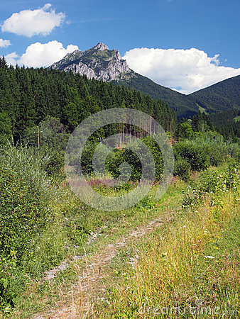 Free Field Road To Peak Of Velky Rozsutec Royalty Free Stock Image - 32678346