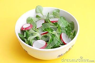 Field salad with radish