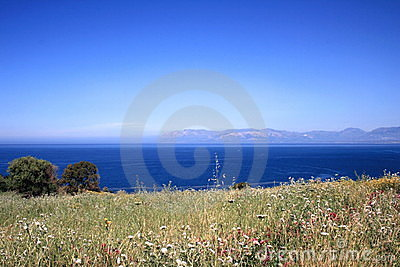 Field and sea landscape