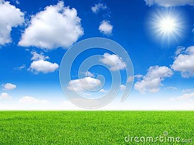 Field and sun sky