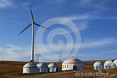 A field of wind turbines