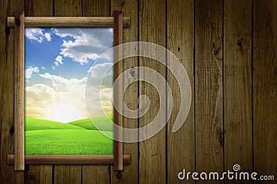 Field Through Window