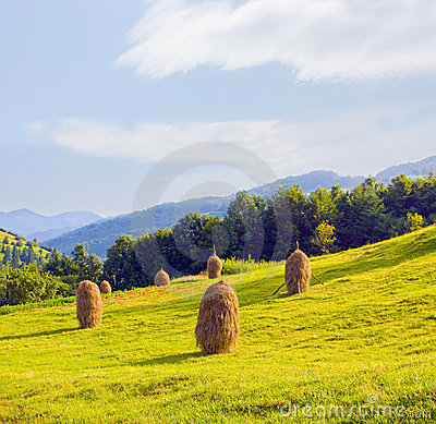 Free Field With Haystack Stock Photography - 10222502