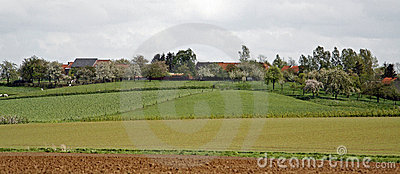 Fields and farms panorama