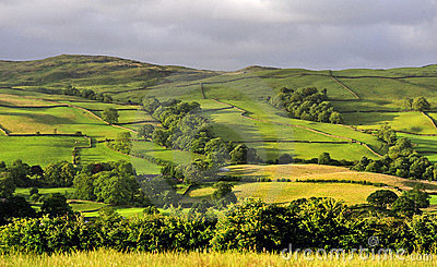 Fields and Meadows, Cumbria
