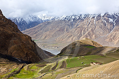 Fields in Spiti Valley in Himalayas