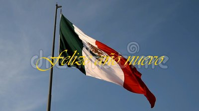 Fiesta de fin de año en México metrajes