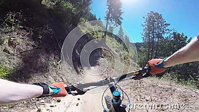 Fietsers die berijdende bergfiets in groen bos op zonnige dag biking bij Freund-canion in eerste persoons4k standpunt POV stock footage