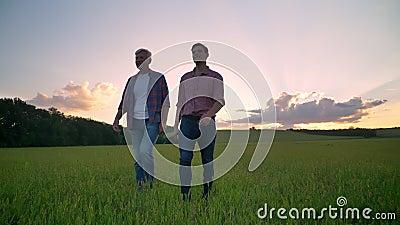 Figlio anziano felice dell'adulto e del padre che sorride e che cammina sul giacimento della segale o del grano, bello tramonto n stock footage