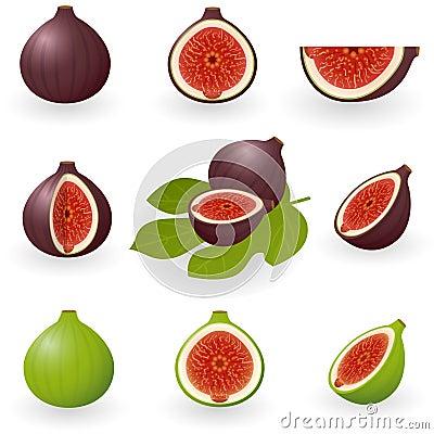 Free Figs Stock Photos - 12467903