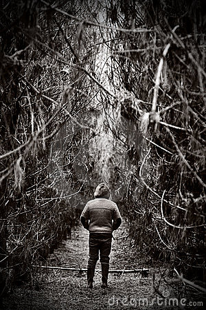 Free Figure Facing Away In Dense Forest Path Stock Image - 7975341