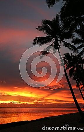 Free Fiji Sunset Royalty Free Stock Image - 3170786