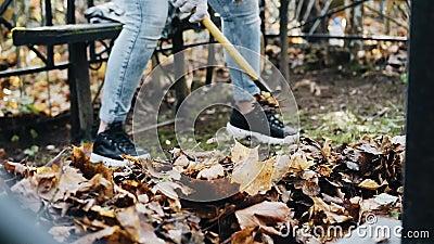 Fille nettoyée sur la tombe dans le cimetière Jour d'automne ensoleillé clips vidéos