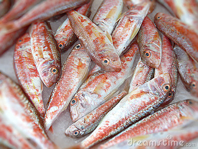Filleted Mullet fish