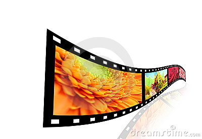 Film strip with pictures of flowers.