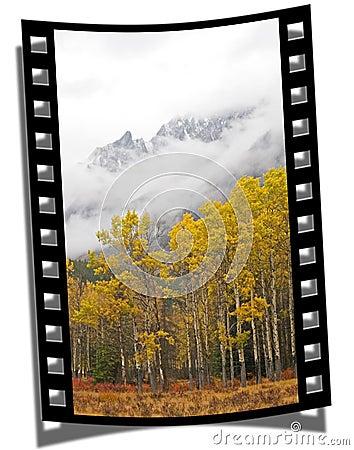 Free Filmstrip Frame Royalty Free Stock Photos - 3874158