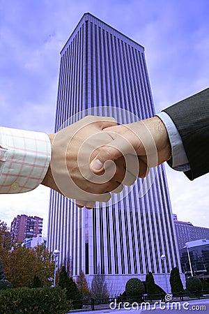 Free Finance Handshake Royalty Free Stock Photography - 3129027