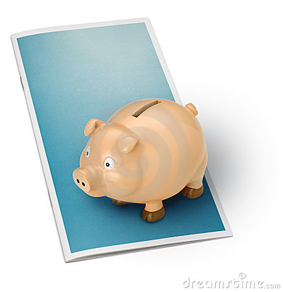 Financial Brochure Piggy Bank