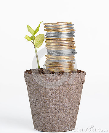 Free Financial Growth, Success And Security Stock Images - 49197834