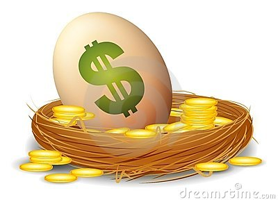 Financial Nest Egg
