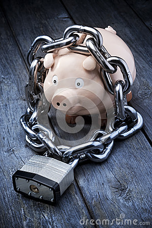 Financial Security Piggybank