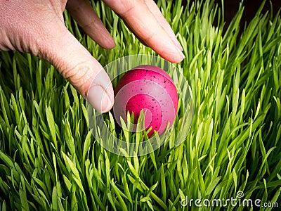 Finding an Easter Egg