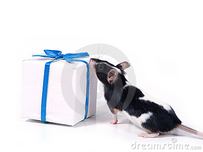 Finding a present