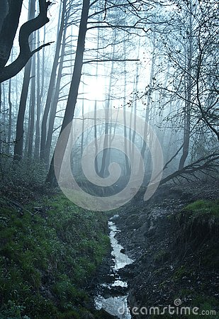 Free Fine Art Fantasy Color Outdoor Nature Image Of A Small River / Creek In A Foggy Winter Forest With Rocks,undergrowth,bridg Stock Photography - 130669832