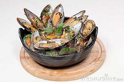 Fine dining meal, new zealand mussels