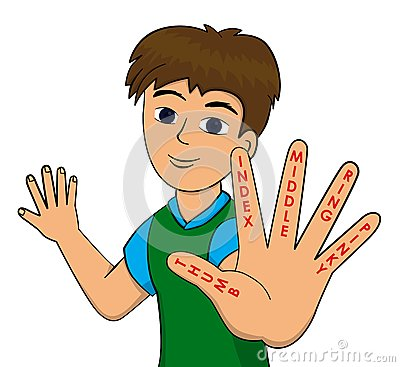 Finger names