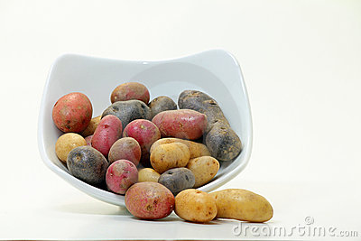 Fingerling Potatoes (Solanum tuberosum)