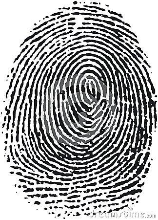 Fingerprint (16)