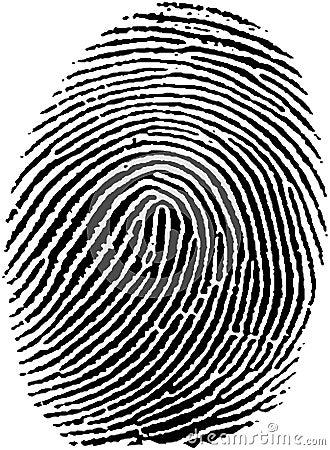 Fingerprint (17)