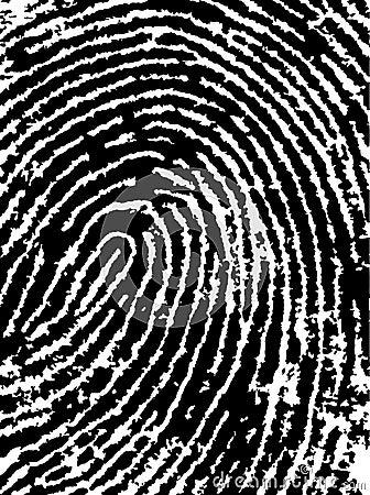 FingerPrint Crop 4