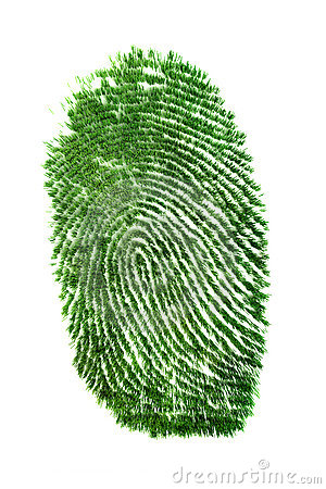 Fingerprint of grass