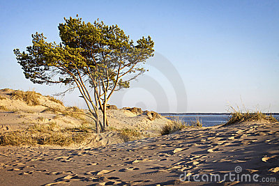 Finland: Yyteri beach