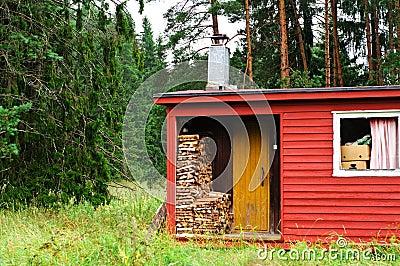 Finnish sauna with wood