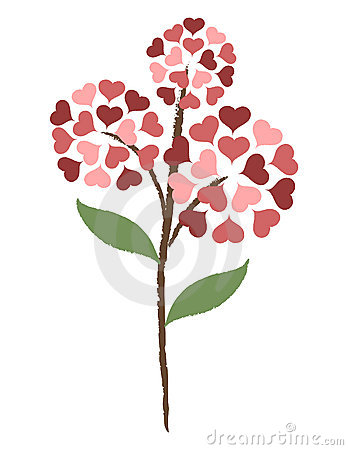 Fiore del cuore