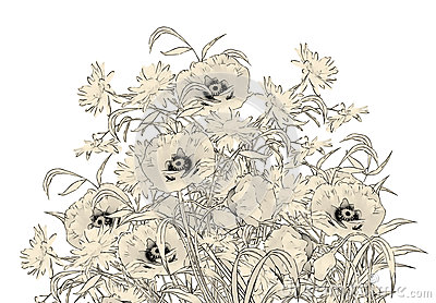 Fiori del disegno della mano della matita dell 39 acquerello for Disegni di fiori a matita