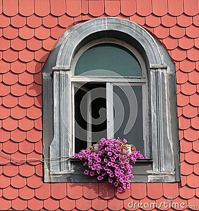 Fiori sulla finestra fotografia stock libera da diritti immagine 11295797 - Finestra a bovindo ...