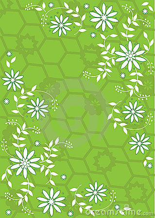 Fiori verdi e bianchi fotografia stock libera da diritti for Fiori verdi