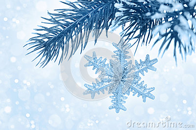 Fir branch with Christmas decoration on blue background, bokeh