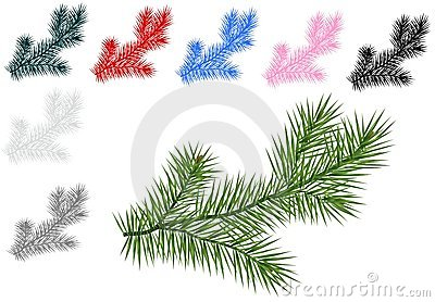 Fir branches, cdr vector