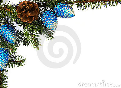 Fir brunch with christmas decoration