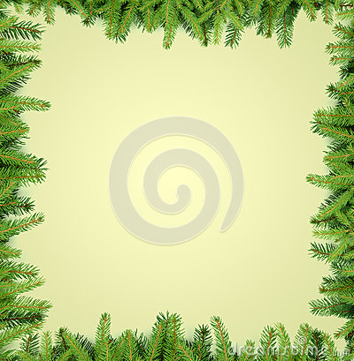 Fir tree branches frame