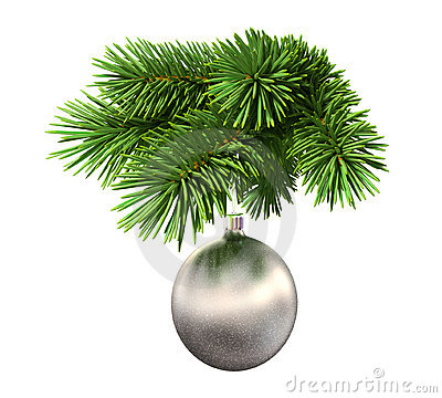 Fir tree with a christmas ball