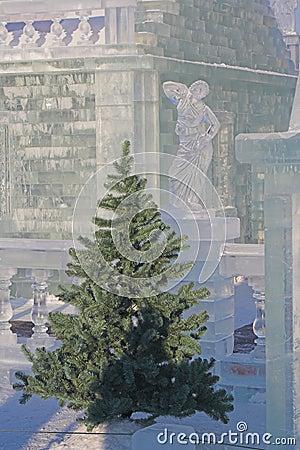 Fir-tree and ice sculpture