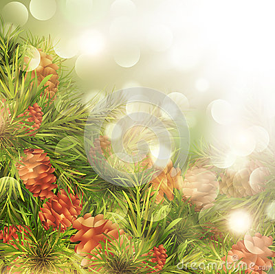Fir Tree Over Bright Background
