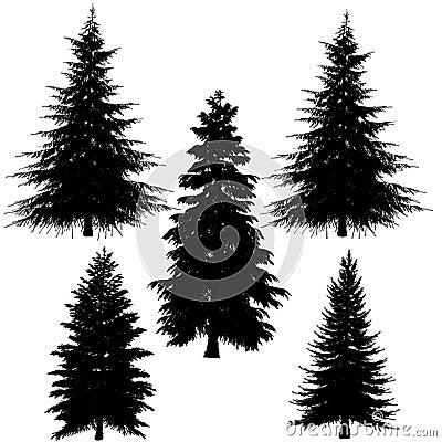 Fir-tree silhouette