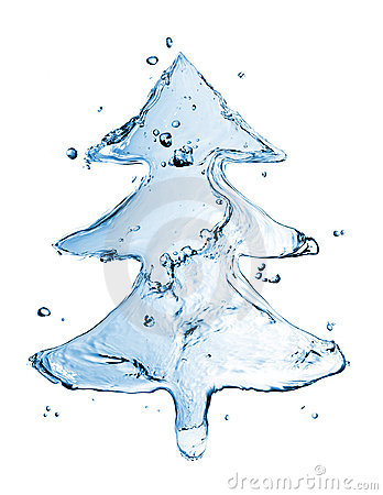 Fir tree from water splash